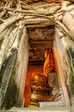 Thailand Temple. Amazing in thailand Royalty Free Stock Photo