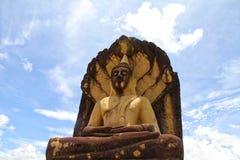 Thailand Temple. Buddha travel tree wat white worship yellow Stock Photography