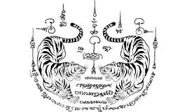 Thailand traditional tattoo,tiger royalty free stock photo