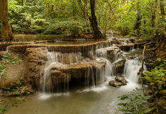 Thailand vattennedgång Arkivfoton