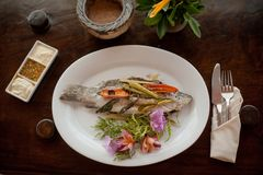 Thailand, vissen Royalty-vrije Stock Foto's