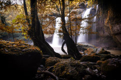 Thailand waterfall Royalty Free Stock Images