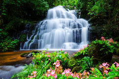 Thailand waterfall Royalty Free Stock Photography