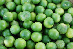 Thailemon verde Fotos de Stock Royalty Free