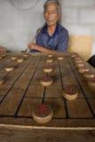 Thailändische Männer spielen chinesisches Schach - XiangQi Stockbild