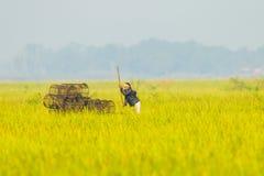 Thailändsk infödd fiskare som finner något fisk Royaltyfri Foto