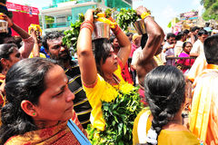 Thaipusam. Or Thai Poosam is a Hindu festival celebrated mostly by the Tamil community on the full moon in the Tamil month of Thai (January/February). It is not Stock Photo