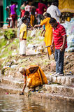 Thaipusam Royalty Free Stock Photography