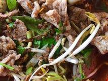 Thais de Stijlvarkensvlees of Rundvlees van de noedelsoep Stock Foto's