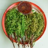 Thais Kruidig de Spaanse peperdeeg van Voedsel` Nam prik platu ` met Fried Mackerel Stock Foto's