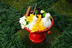 Thais KUUROORD Stock Foto's