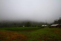 Thais lantgård Royaltyfria Bilder