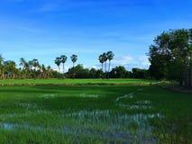 Thais lantgård Arkivbilder
