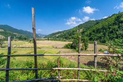 Thais lantgård Royaltyfri Fotografi