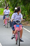 Thais Schoolmeisje dat een fiets berijdt Royalty-vrije Stock Afbeeldingen