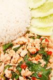 Thais stijl kruidig voedsel Royalty-vrije Stock Afbeelding