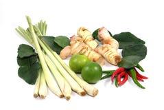 Thais voedselingrediënt voor Tom yum Stock Foto