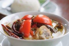 Thaise cuisine- tom khakai - kip in kokosmelksoep royalty-vrije stock afbeelding