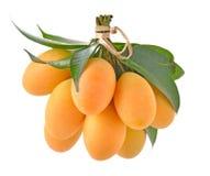 Thaise die fruit van de close-up het zoete Marian pruim op witte backgroun wordt geïsoleerd stock foto