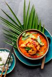 THAISE GARNALEN RODE KERRIE Soep van de de traditie rode kerrie van Thailand de Thaise met garnalengarnalen en kokosmelk Panaengk stock foto's
