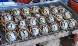 Thaise gezouten makreel Stock Foto