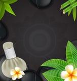 Thaise herbs massage spa met de natuurlijke achtergrond van kompreskruiden Royalty-vrije Stock Afbeeldingen