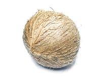 Thaise jonge kokosnoot Royalty-vrije Stock Afbeelding