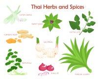 Thaise kruiden en kruiden die illustratie kruiden royalty-vrije illustratie