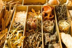 Thaise Kuuroordkruiden Stock Afbeeldingen