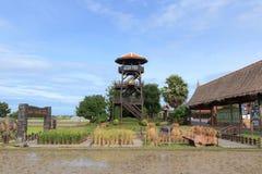 Thaise Landbouwer Stock Foto