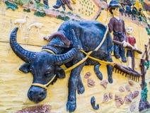 Thaise landbouwers en Buffels stock afbeeldingen