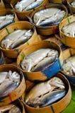 Thaise makreel in markt Royalty-vrije Stock Afbeelding