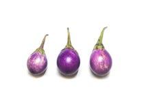 Thaise purpere aubergine Stock Foto's