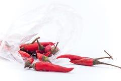 Thaise roodgloeiende Spaanse pepers op de witte achtergrond, Roodgloeiende Spaanse pepersisol Stock Afbeelding