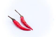 Thaise roodgloeiende Spaanse pepers op de witte achtergrond, Roodgloeiende Spaanse pepersisol Stock Foto's