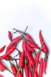Thaise roodgloeiende Spaanse pepers op de witte achtergrond, Roodgloeiende Spaanse pepersisol Stock Foto