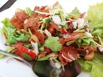 Thaise stijl van het salade de kruidige knapperige varkensvlees stock fotografie