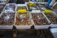 Thaise verse zeevruchtenbazaar met verscheidenheid van schaaldieren royalty-vrije stock afbeeldingen