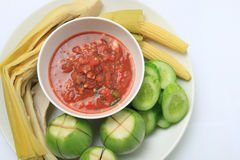 Thaise voedsel kruidige saus met shrimdeeg Royalty-vrije Stock Foto