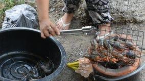Thaise vrouw het koken grillgarnalen of garnaal op fornuis Thaise stijl bij openlucht stock videobeelden