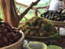 Thaise vruchten Royalty-vrije Stock Afbeeldingen
