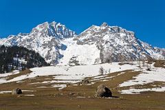 Thajiwas-Gletscher bei Sonamarg, Jammu und Kashmir, Indien Lizenzfreies Stockbild