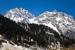 Thajiwas lodowiec przy Sonamarg, Jammu i Kaszmir, India Zdjęcie Royalty Free