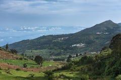 Thalaikundha  valley in Nilgiri Hills, India. Royalty Free Stock Photo
