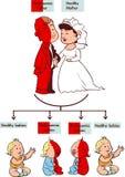 Thalassemia infographic trek Stock Afbeelding