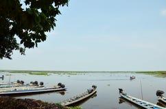 Thale Noi湖和水鸟在博他仑府泰国停放 免版税库存照片