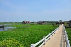 Thale Noi湖和水鸟在博他仑府泰国停放 免版税库存图片