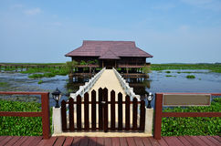 Thale Noi湖和水鸟在博他仑府泰国停放 库存照片