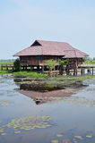 Thale Noi lake and Waterfowl Park at Phatthalung Province Thailand. Thale Noi Non-hunting Area Stock Photo