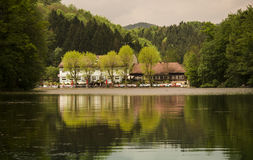 Thalersee Lake Stock Photography